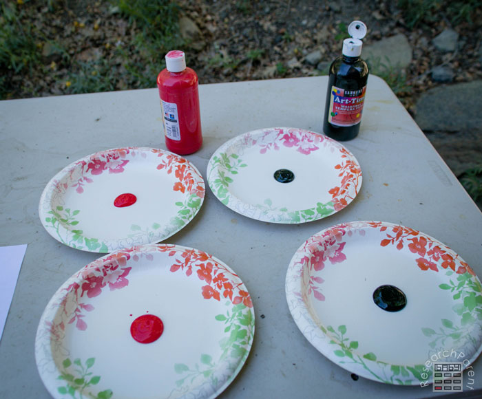 Add paint to plates