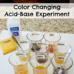 Color Changing Acid-Base Experiment