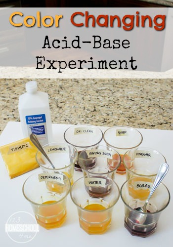 Color Changing Acid-Base Science Experiment