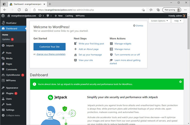 First View of WordPress Dashboard