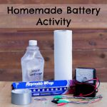 Homemade Battery Activity
