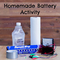 Homemade Battery Activity
