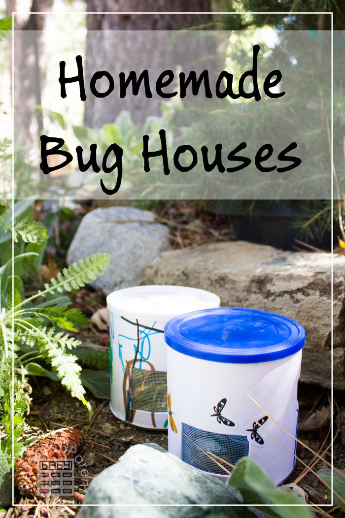 Homemade Bug Houses by ResearchParent.com