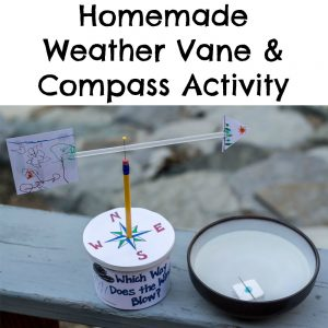 Homemade Weather Vane & Compass Activity