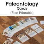 Paleontology Cards