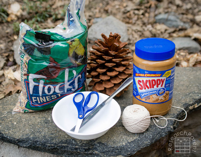 Pine Cone Bird Feeder Supplies