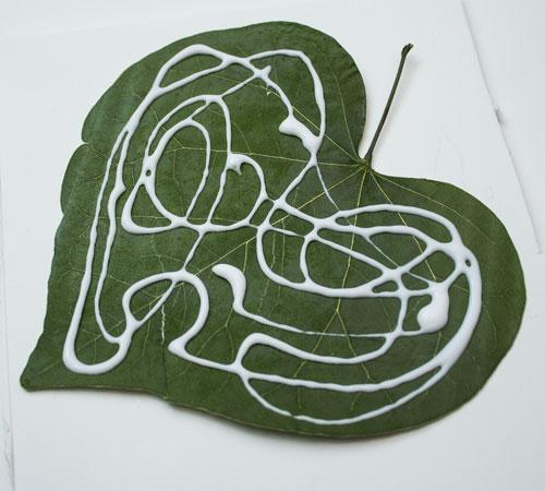 Put Glue on Leaf