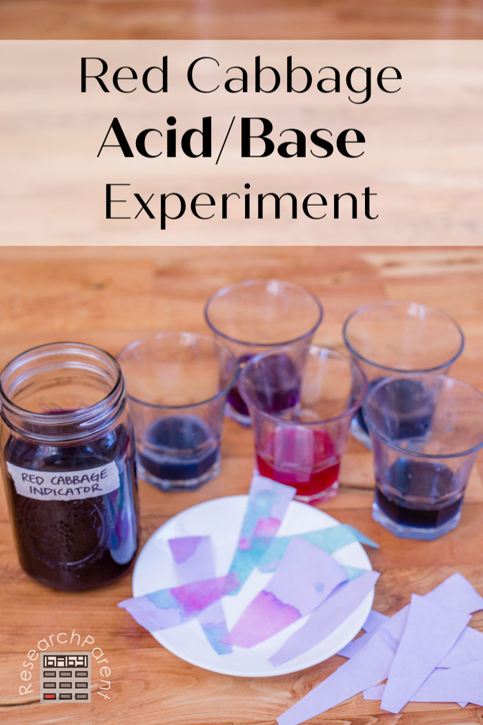Red Cabbage Acid Base Experiment