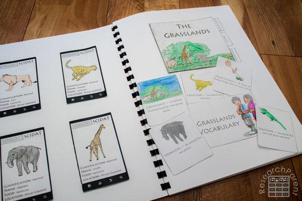 Sassafras Zoology Interactive Notebook