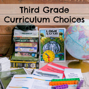 Third Grade Curriculum Choices