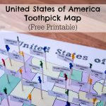 United States of America Toothpick Map