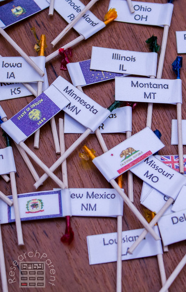 United States of America Toothpick Map Flags