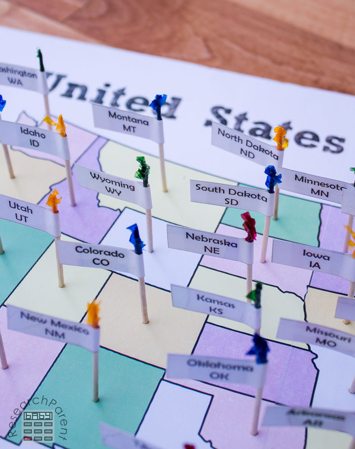 United States Toothpick Map Close-up