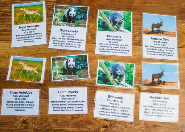 World Zoology Cards Asia