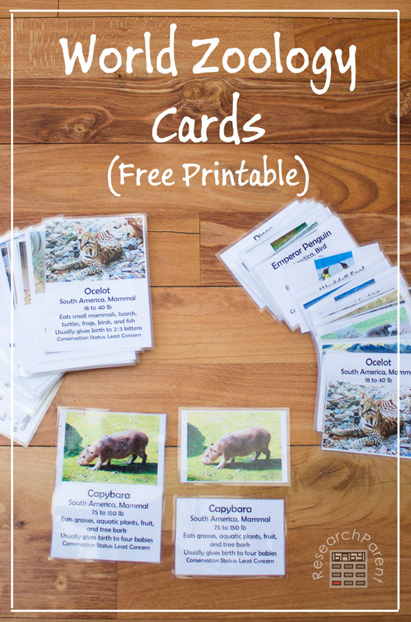 World Zoology Cards by ResearchParent.com