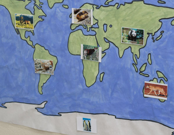 World Zoology Cards on World Map